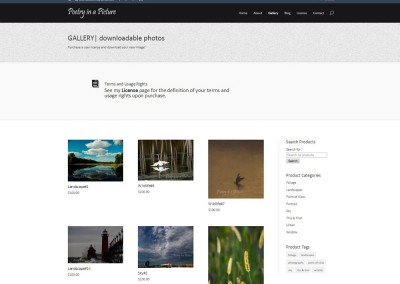 SCREENSHOT| gallery page - WordPress blog website design