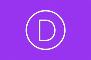 divi-theme-review